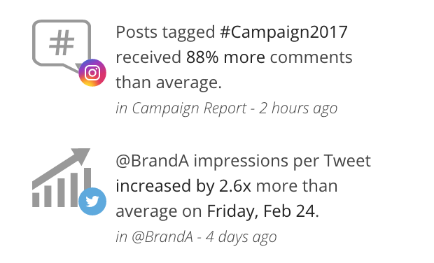 social media report - insights